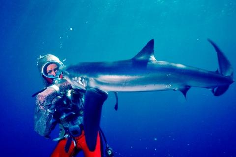 Scuba diver with a shark