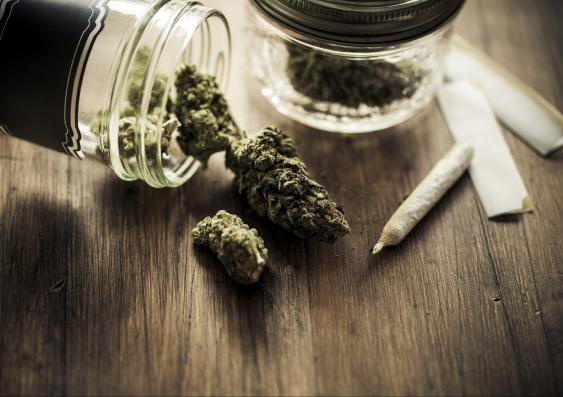 10_cannabis.jpg
