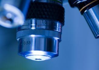 12 microscope 1