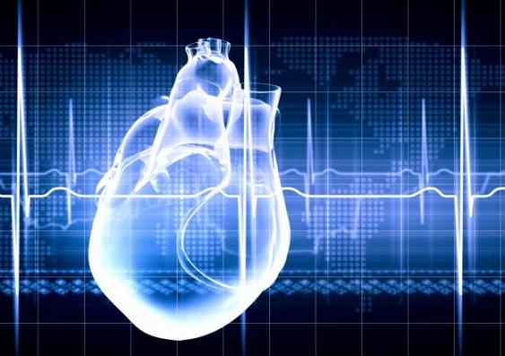 15 heart 1