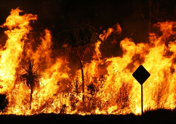 20_bushfire_shutterstock.jpg