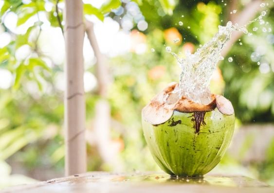 27_coconut3_shutterstock.jpg