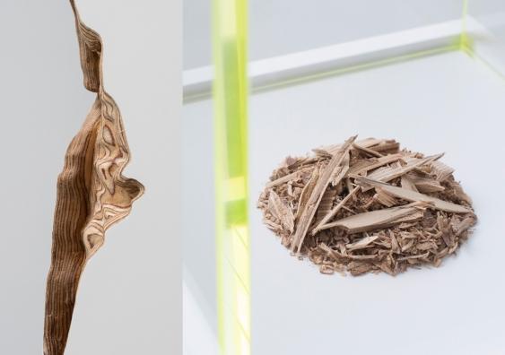Plinth 1 & 2 (2019) details, Guy Keulemans & Kyoko Hashimoto. Photo: Carine Thevanau.