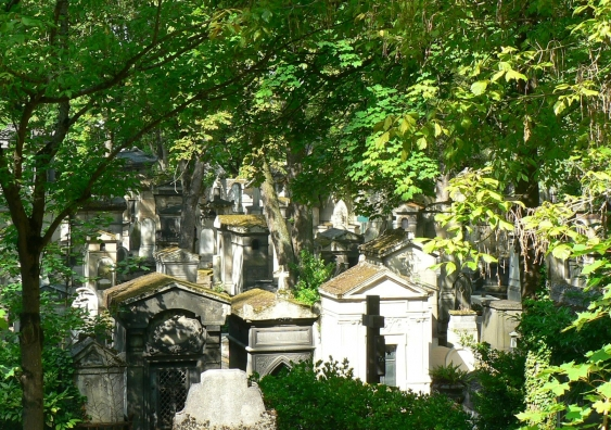 5._pere_lachaise_in_leaf.jpg