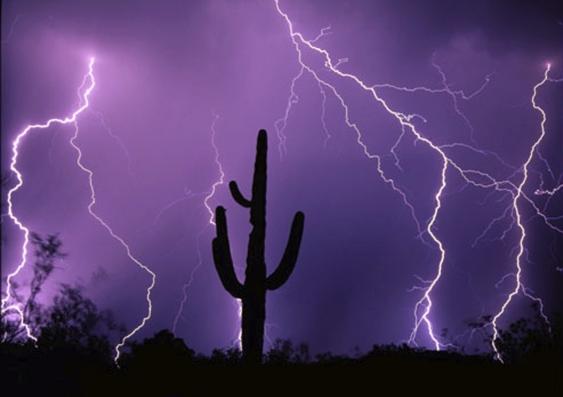 8_desert_storm.jpg