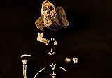 Ancestor inside skeleton