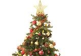 Christmas tree 1 inside