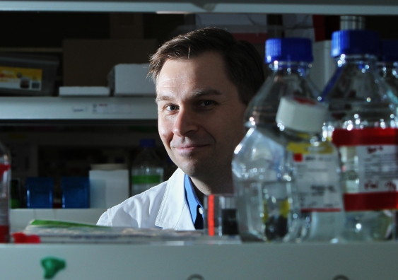David Sinclair solo lab 0