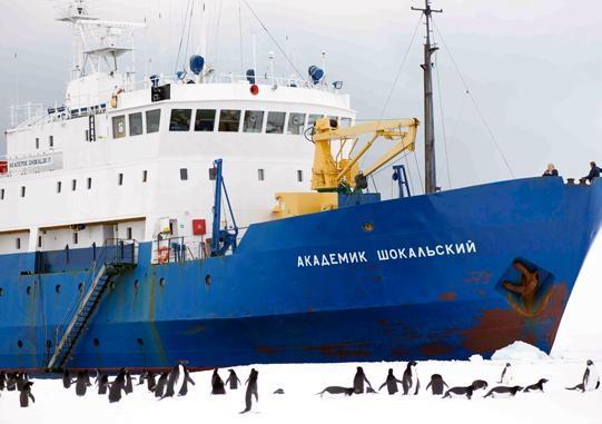 Shokalskiy 1