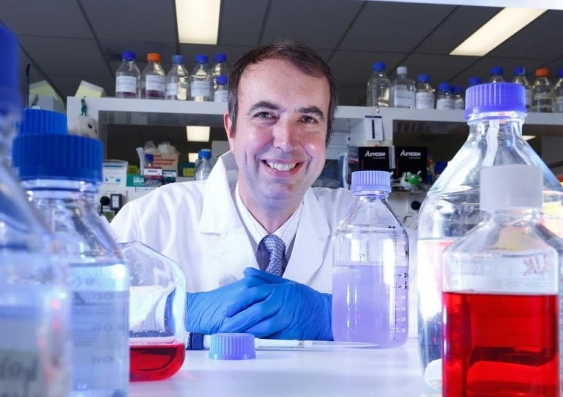 bluemerlin_0.jpg