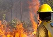 Bushfire inside