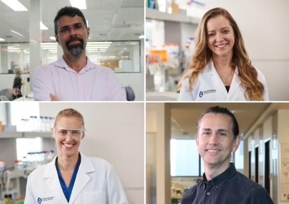 Dr Omid Faridani, Dr Michelle McDonald, Dr Joanna Achinger-Kawecka and Associate Professor Alex Swarbrick)