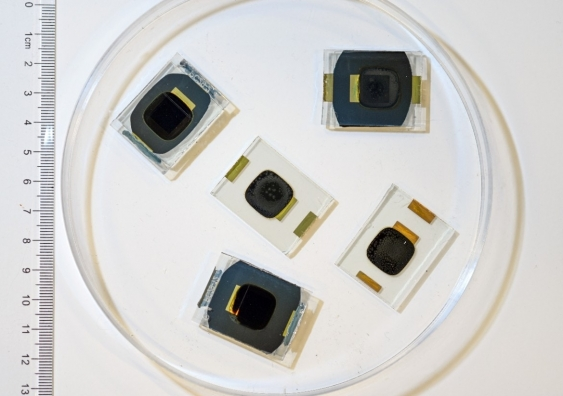 A sample of some of the perovskite cells used in the experiment