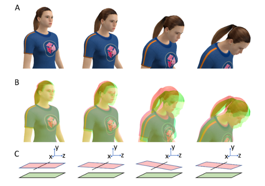 Difference between real and virtual head movements