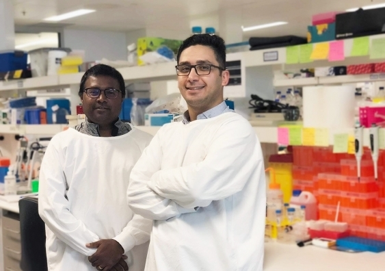 Dr Vashe Chandrakanthan and Dr Hossein Tavassoli in the lab