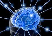 Essential sci brain inside