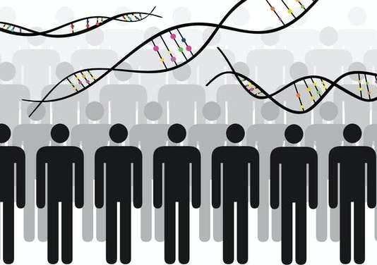 Gene graphic with human figures