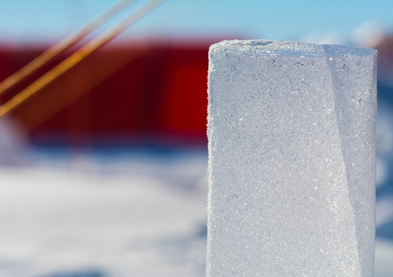 Ice core sample from the Patriot Hills area