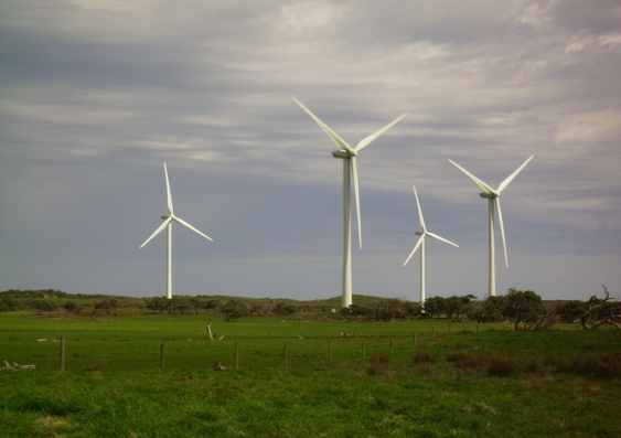 Image result for wind farm