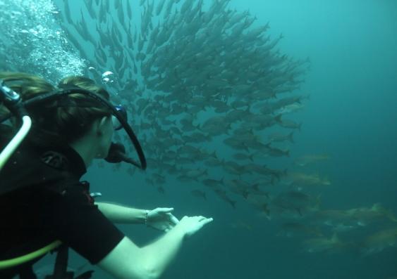 Martina de Marcos dives in Los Cabos, Baja California Sur, Mexico