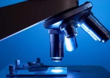Microscope1 1