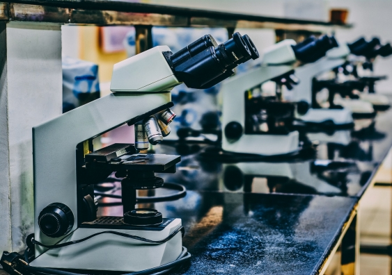 Microscopes in a laboratory