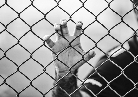 Black and white image. Hand holding onto wire fence.