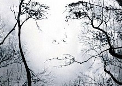 parkinsons_face-in-trees-illusion.jpg