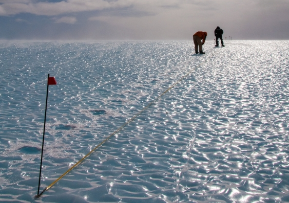 Researchers working at the Patriot Hills Blue Ice Area of Antarctica