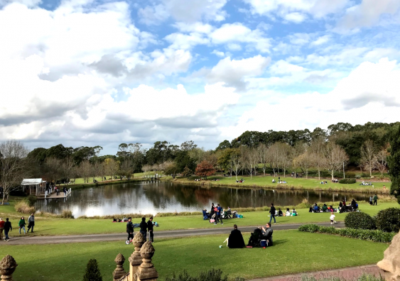 people socialising in a park