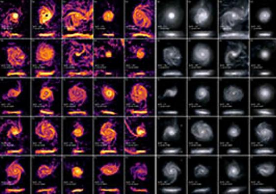An ensemble of twenty-five disk galaxies