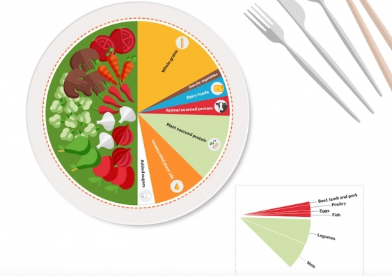 Figure 3 pie chart from the EAT-Lancet Commission's report
