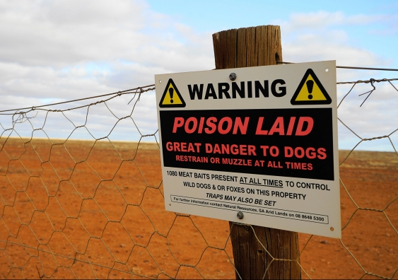 Poison baiting sign