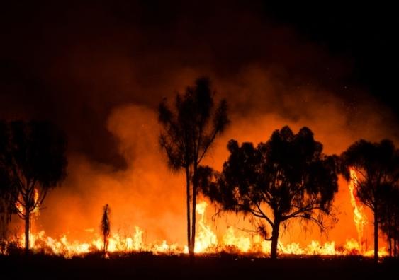 A bushfire in the Australian outback