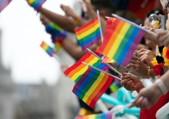 rainbow flags being waved in the air at a pride event