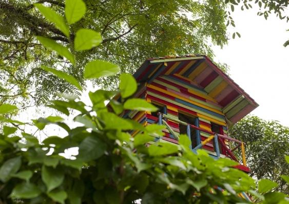 rainbow treehouse in a park