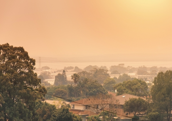 Bushfire haze
