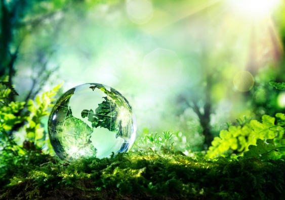 A glass ball on moss showing the world, a symbolic picture for environment