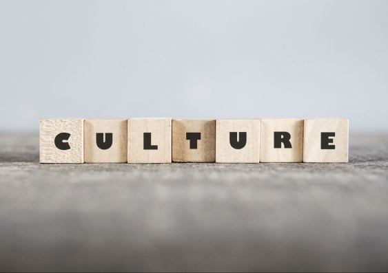The building blocks of culture