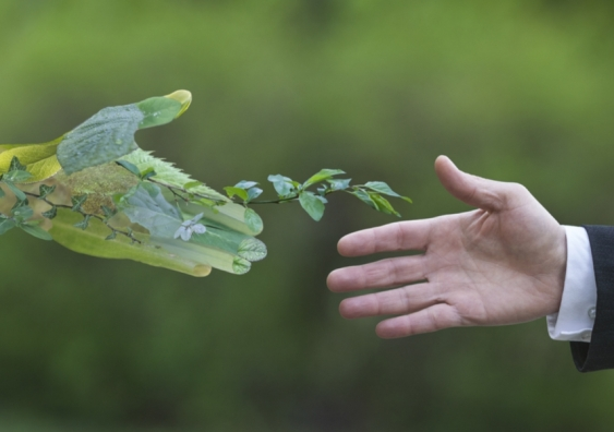 A man dressed in a suit reaching out to a green hand symbolising nature.