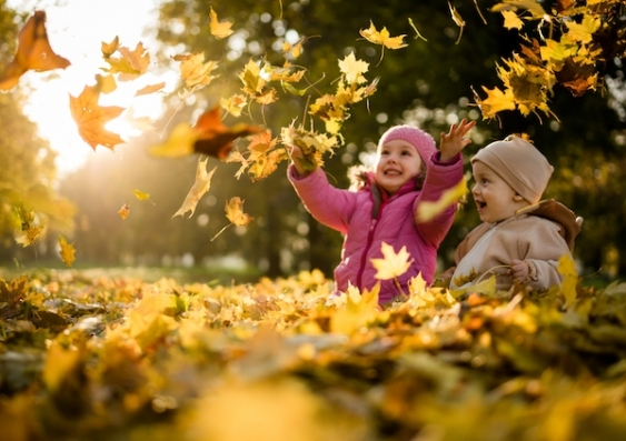 Two young children play amongst autumn leaves