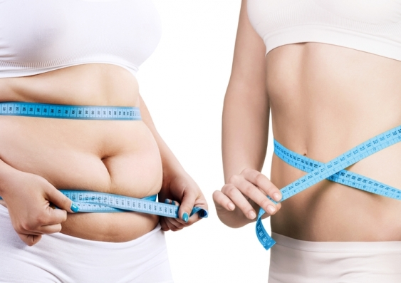 Genes, joules or gut bugs: which one is most to blame for weight gain? |  UNSW Newsroom