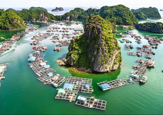 Floating fishing villages in Vietnam