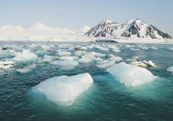 sea ice.jpg