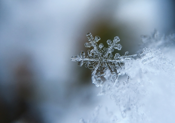 Snowflake with a self-referential fractal pattern