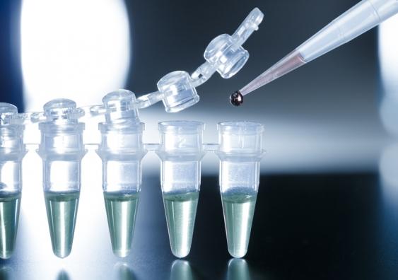 stem_cell_research.jpg