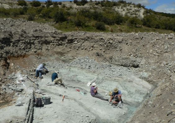 the_fossil_dig_site_at_st_bathans_new_zealand_where_the_holotype_of_vulcanops_was_found._pic_by_trevor_worthy.jpg