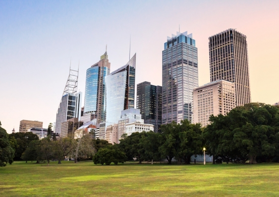 Sydney CBD View