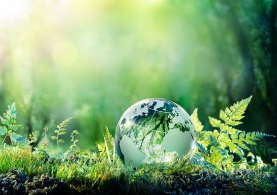 Global Impact Rankings