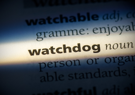 Watchdog dictionary definition